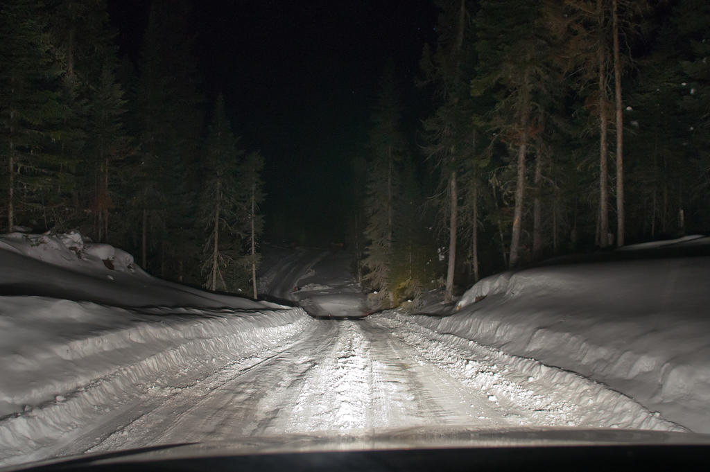 Crossing a creek in taiga at night on a way back.